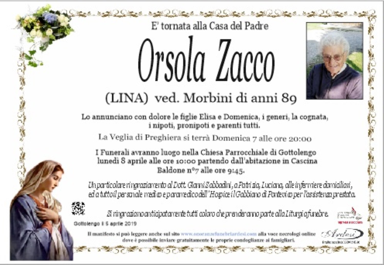 ORSOLA ZACCO - GOTTOLENGO
