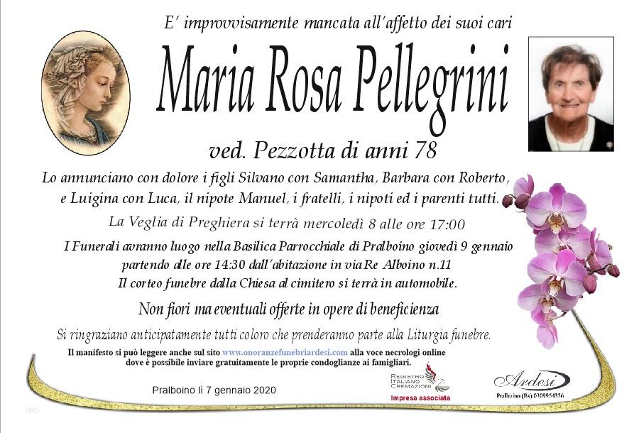 MARIA ROSA PELLEGRINI