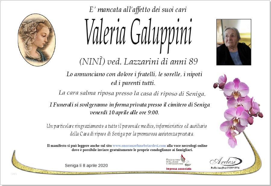VALERIA GALUPPINI - SENIGA